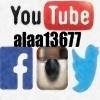 alaa13677