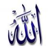 islammuslima12
