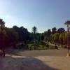 omarzahra
