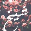 abdullah91