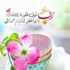 AhmedH2020