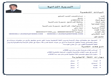 تصميم سيرة ذاتية احترافية عربي او انجليزي