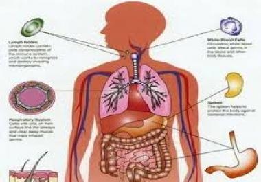كتابة مقالات عن أنواع التحاليل الطبية المختلفة.