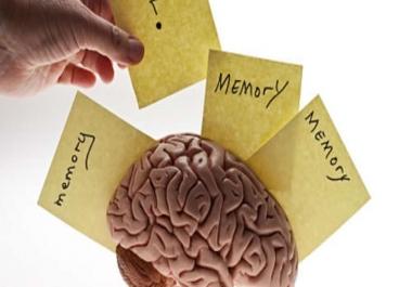 الذاكرة و النسيان و ألزهيمر