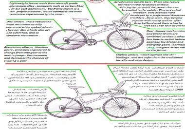 تحويل 10 صفحات مكتوبة إلى مستند word بالعربية أو الانكليزية