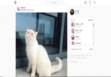 بيع حساب Instagram فيه 10.900 متابع جميعهم متفاعلين