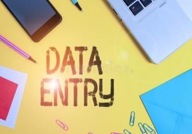 إدخال وتفريغ البيانات على برامج الوورد والإكسيل والبروجيكت