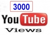 3000 مشاهدة حقيقية وامنة 100% على الفيديو ب5 دولار