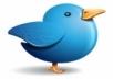 عرض خاص 45 الف متابع تويتر متابعين من دول الخليج