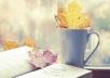 كتابة اغنية او قصه قصيرة حصرية
