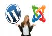 تركيب اي موقع باستعمال joomla او wordpress