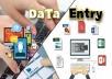 ادخال بيانات الى ملف وورد او تصميم بور بوينت أو اكسيل باحتراف ودقة عالية