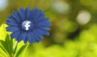 حملة إعلانية على الفيسبوك بأقل الأسعار