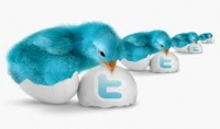 أضيف لك 200 متابعة حقيقية عربية خليجية لهم صور وتغريدات ولا ينقصون على الإطلاق