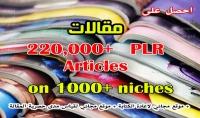 اعطيك 220 000 مقالة PLR بكامل الحقوق في اكثر من 1000 نيش