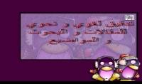 تدقيق لغوي كامل للنصوص العربية او الانجليزية