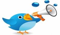 6500 متابع  فلورز  تويتر اجنبي بجودة عاليه بسعر 10$