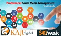إدارة صفحات التواصل الإجتماعي بواسطة فريق عمل وكالة تسويق عالمية  بحد أقصى 3 شبكات لمدة أسبوع