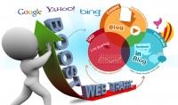 فحص موقعك وتقدير نتائجة وحالتة على محركات البحث