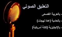 تفريغ النصوص المكتوبة بالعربية أو الإنجليزية إلى ملفات صوتية بنطق واضح وسليم تمامًا  صفحة 300 كلمة