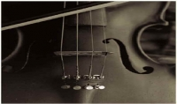 عزف مقطوعة أو أغنية على الكمان تريد أن تسمعها أو تهديها وإرسالها لك