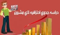 دراسه جدوي احترافيه لاي مشروع