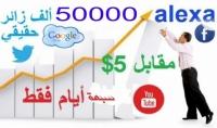 جلب 50000 زائر لموقعك او مدونتك بي 5$