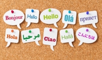 ترجمة احترافية متعددة اللغات تصل الي 2000كلمة12ساعة او اقل