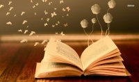 كتاب كيف تصبح محترف بالسيو والتدوين