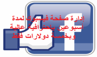 إدارة صفحة فيسبوك لمدة أسبوعين بإحترافية عالية .