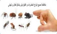 أبادة جميع انواع الحشرات للشقق   الفيلات   الشاليهات وجميع القطاعات   المعاينة