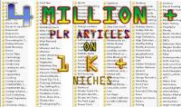 أقدم لك 4 000 000 مليون مقالة انجليزية PLR و ازيد من 10.000 نيتش