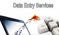 ادخال بيانات على ملفات الوورد او الاكسل أو تفريغها وتنسيقها