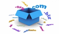 حجز دومين com .net .org .info. بلوحة تحكم لمدة سنة