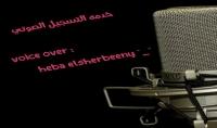 voice over - خدمه التعليق الصوتي- بكافه انواعه