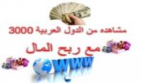 3000 زائر لموقعك من الدول العربية