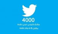 4000 متابع خليجي لحسابك على تويتر