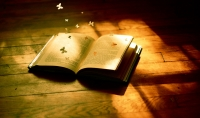 اقرا لك كتابا وارسله لك ملخصا ومنسقا.