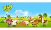 بيع لك ادوات توسيع او منتجات نادره في لعبه Hay Day