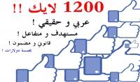 جلب 1200 معجب عربي مستهدف و حقيقي لصفحتك على فيسبوك ..