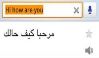 سوف اقوم بترجمه 10 صفحات من العربي الي الانجليزى والعكس كتابه فقط