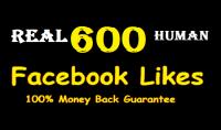 600 متابع حقيقي مصرى متفاعل