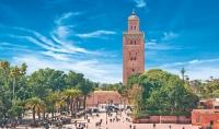 خدمات تحتاجها من مدينة مراكش