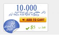 10000 زائر حقيقي من أي دولة تريد لمدة 7 أيام
