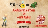 أكثر من 3 ملايين مقال PLR انجليزي و 500 كتاب MRR كهدية