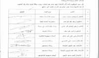 مدقق ومصحح لغوي ومنسق حسب الأصول المتبعة في الجامعات