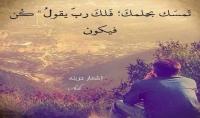 ضع اعلانك على موقع صورى   اكبر موقع عربي للصور