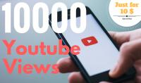 10000 مشاهدة حقيقية وأمنة لفديوهاتك على Youtube فقط مقابل 10 $