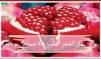 بكتابة عدد 7 قصائد من من مختلف انواع الشعر خاصة الشعر الحزين باللغة العربية