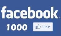 اضافة 1000 معجب لصفحتك عربى حقيقى